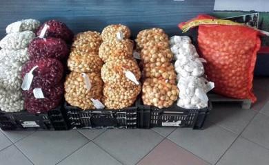 U srijedu podjela sjemenskog materijala